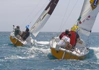 2.	 Photo - Paul Borg & Kylie Forth lead to top Italian team at the 2006 Homerus Blind Match Racing Championships.